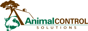 Wildife Control, Animal Removal, Pest Control