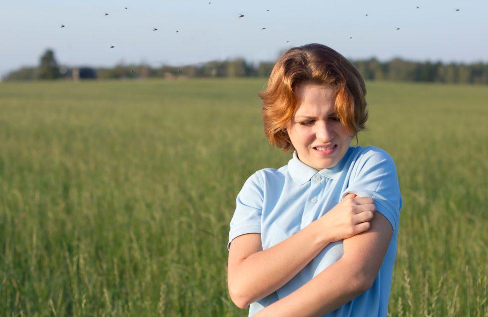 mosquito control in Virginia