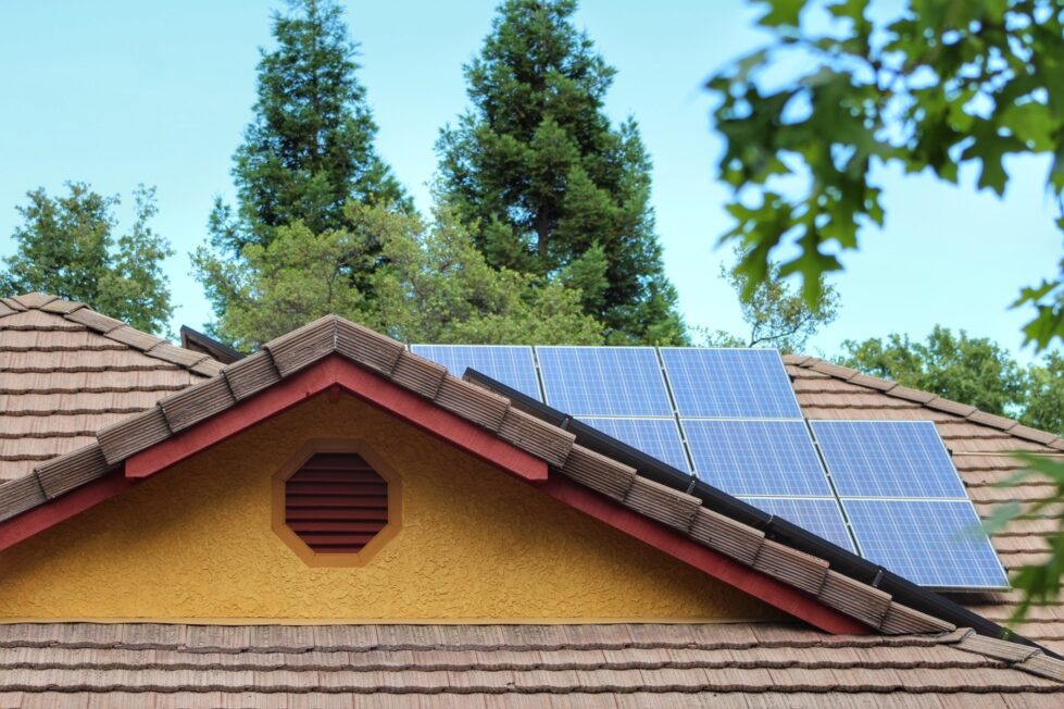 solar panel bird removal