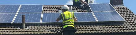 bird removal, pigeon removal for solar panels